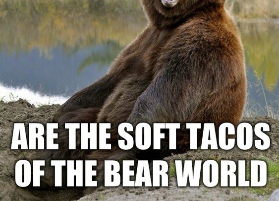 All species love soft tacos. - Imgur