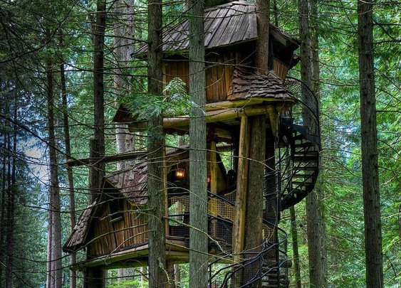 These 18 tree houses are heavenly