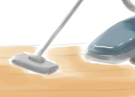 How to Kill Fleas Naturally: 16 Steps (with Pictures) - wikiHow