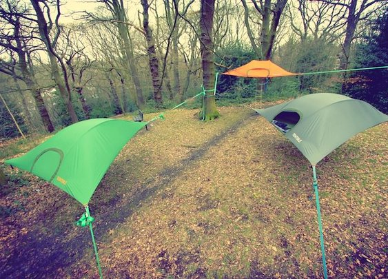 The Incredible Tentsile Stingray Tent