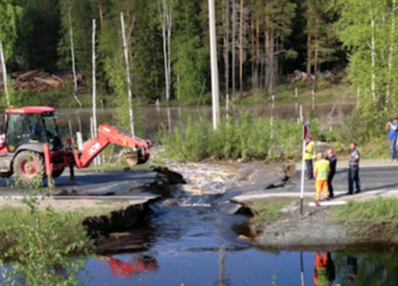 BBC News - Russia: Beaver dam causes road to cave in