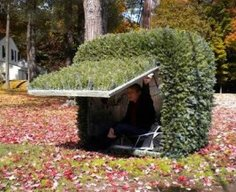 Shelter Hidden as Yard Bush   StashVault