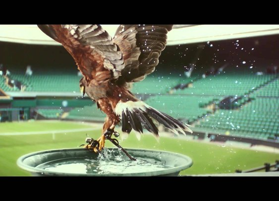 Perfectionists: Rufus - The Real Hawk-Eye | Stella Artois UK - YouTube