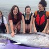 BBC News - Kayakers haul bluefin tuna ashore in Cornwall