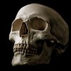 On Re-reading Hamlet | Poems I Write