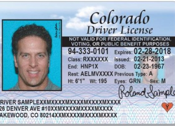 Colorado to begin licenses for immigrants | KOAA.com |