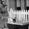 40 Must-See Historical Photos | DeMilked