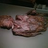 Bog bodies are kings sacrificed by Celts says expert - IrishCentral.com