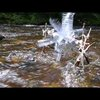 Water Wheel from Plastic Bottles
