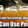 20 Crazy (and Fascinating) Ways You Can Use Pee Instead Of Flushing It - SHTF & Prepping Central