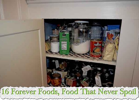 16 Forever Foods, Food That Never Spoil - LivingGreenAndFrugally.com