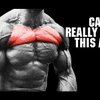 Target Your UPPER CHEST (Pec Isolation Reality!!) - YouTube