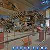 A Panoramic Virtual Tour of the Smithsonian National Museum of Natural History