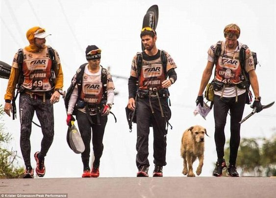Stray dog joins endurance racers in Amazon