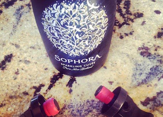 Best Champagne Bottle Stopper - Only $2