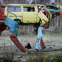 Recycled Cars turned into Giant Metal Cows