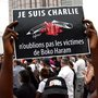 Why did the world ignore Boko Haram's Baga attacks?