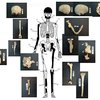Mystery of Greece's Alexander the Great-era tomb deepens with body discoveries  - Telegraph