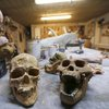 Evolution Of Humans: Ancient Human Fossil Found In Taiwan Complicates Picture