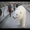 Frightening polar bear roams around London for 'Fortitude' promo - YouTube