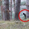 Two Friends Discover A Hidden German Bunker In The Woods. And It's Terrifying.