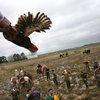 Forget Beads: Cajun Mardi Gras Means A Grand, Drunken Chicken Chase