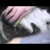 How to Clean Your Cast Iron Pan With Salt