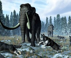 How hunting with wolves helped humans outsmart the Neanderthals