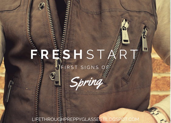Fresh Start: First Signs of Spring