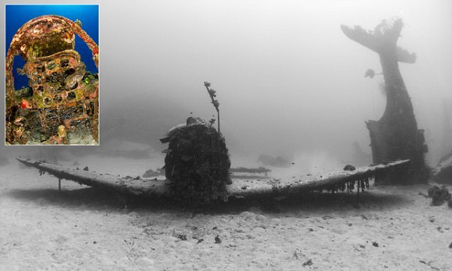 World War Two aircraft lost for 70 YEARS found Pacific Ocean seabed | Daily Mail Online