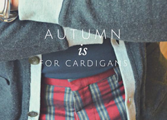 Fall Cardigans