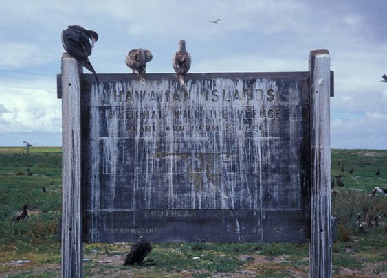 When The Western World Ran on Guano   Atlas Obscura