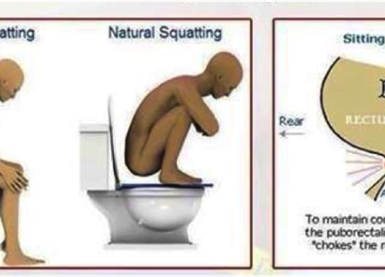 10 Serious Facts About Pooping