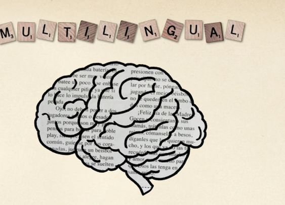 How to learn a new language: 7 tips from TED Translators