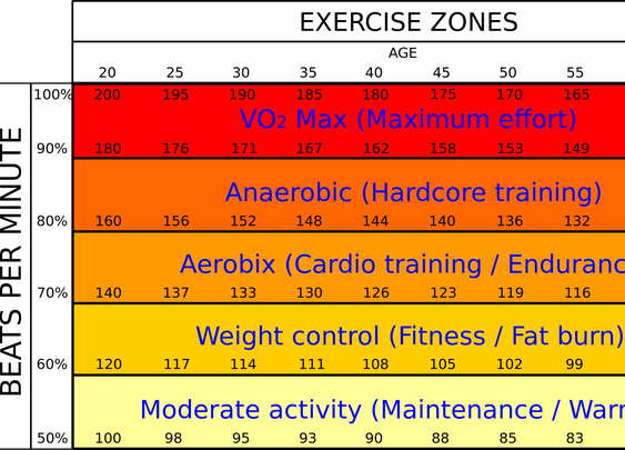 Exercise Zones-for weight loss/cv training