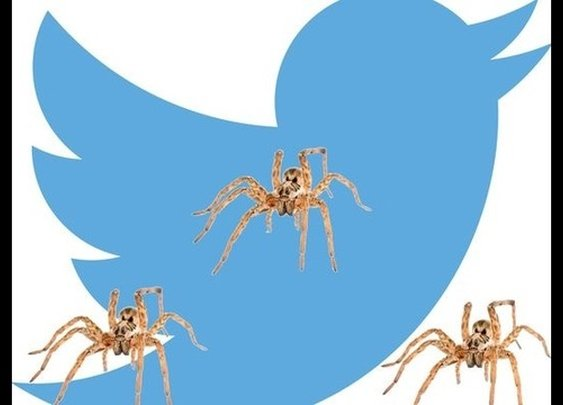 Man live-tweets spider-infested rental car nightmare | 9news.com