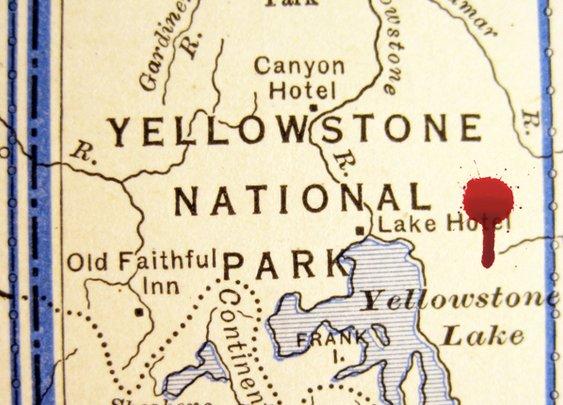 The Perfect Crime May Be Possible in Yellowstone Park