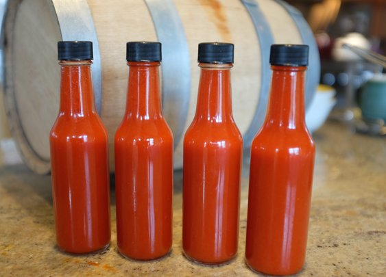 Harvest and Ferment Your Own Simple Hot Sauce