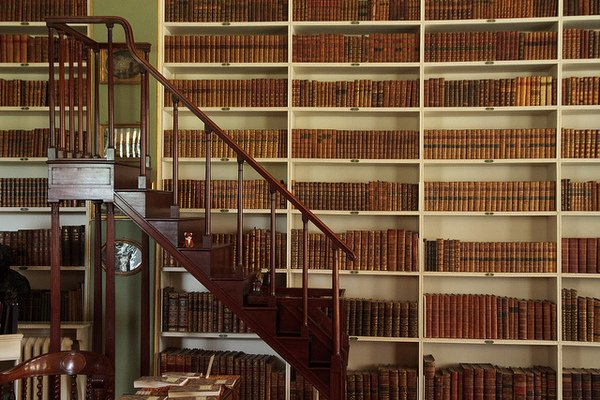 Libraries of Famous Men: Jefferson, Douglass, Roosevelt, and Hemingway