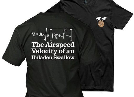 The Airspeed Velocity Of An Unladen Swallow