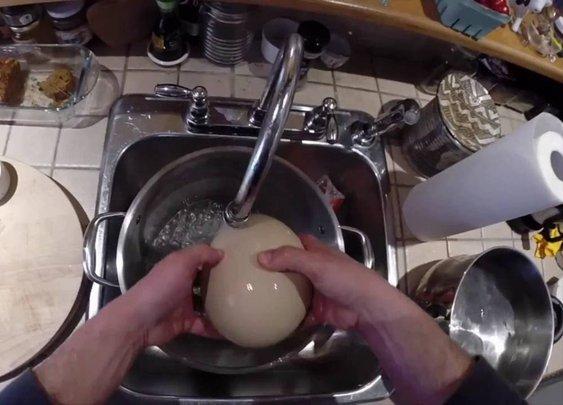 Guy Boils Ostrich Egg