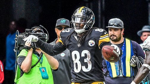 Steelers wide receiver used rookie signing bonus to buy cows for the family farm