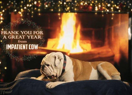 Holiday Yule Log Bulldog