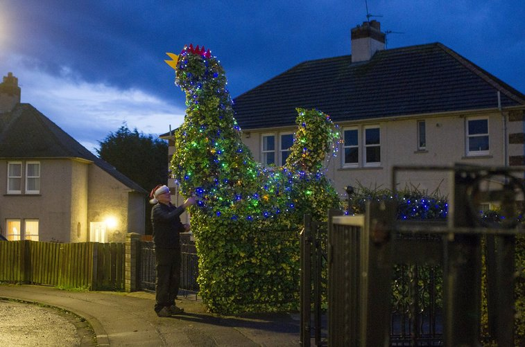 Pensioner pleases neighbours with his massive flashing cock | Metro News