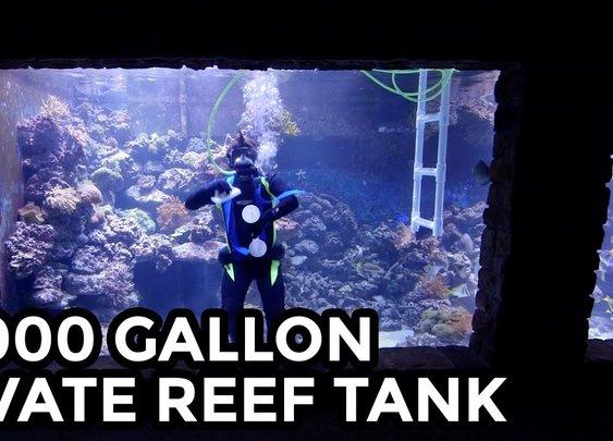 20,000 Gallon Personal Aquarium