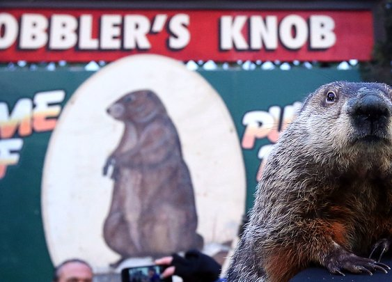 Groundhog Day 2017: Punxsutawney Phil Sees His Shadow