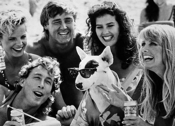 The Life, Death, and Resurrection of Spuds MacKenzie, The Original Party Animal | Mental Floss
