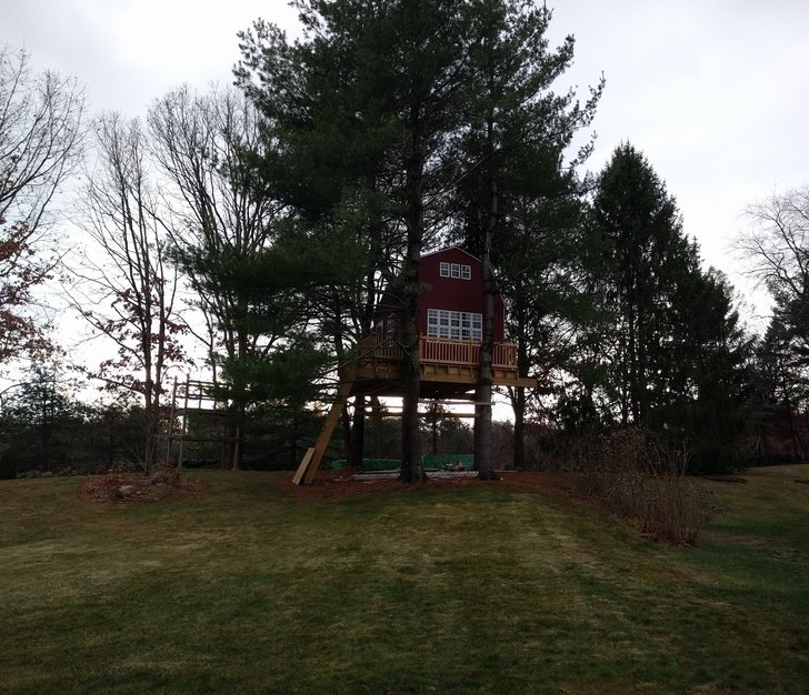 A Treehouse. Literally.