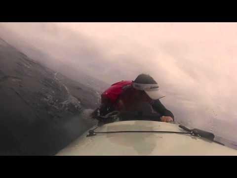 Great White knocks kayaker into the ocean