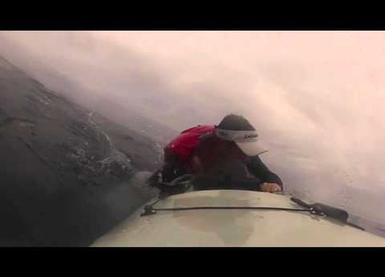 Great White knocks kayaker into the ocean